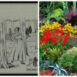 Graus 1 a 10 de Jardim - ou Touro